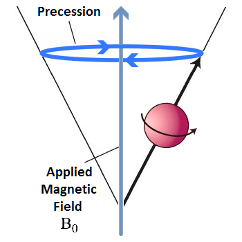 Hydrogen Atom Precession Diagram Online Schematic Diagram